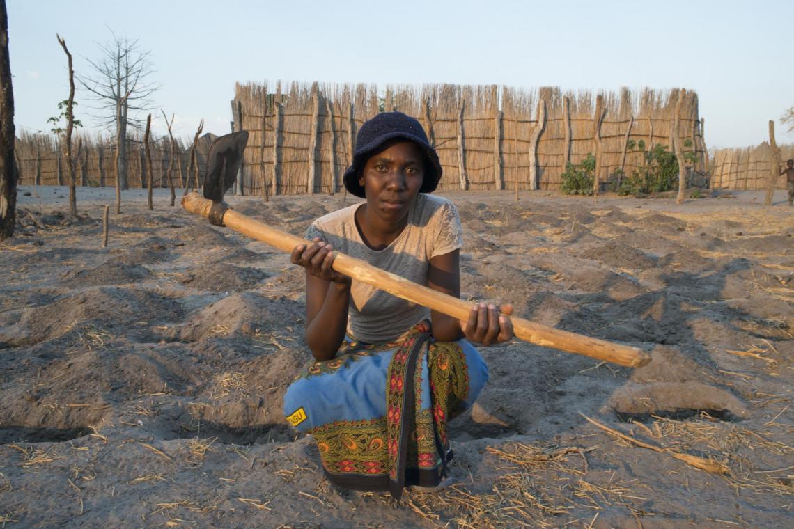 Zambezi agriculture
